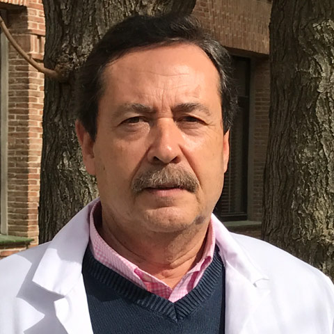 Dr. Sergio Suárez Guijarro