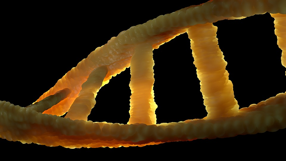 : Foto de cadena de ADN sobre fondo negro
