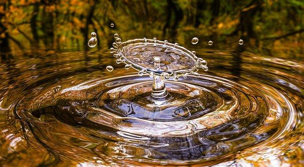 Más sobre el agua, importante para ti.