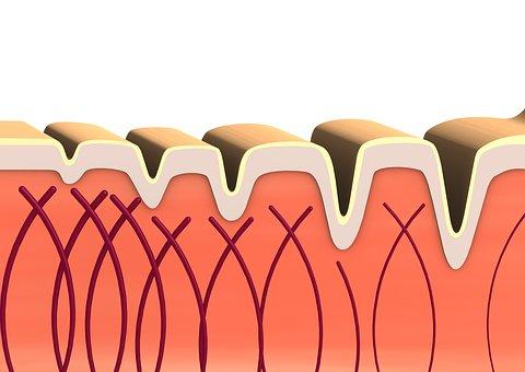 El colágeno, beneficios y contraindicaciones