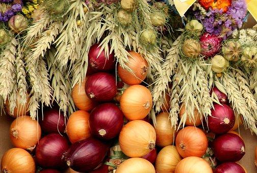 Las cebollas, potentes aliadas para la salud