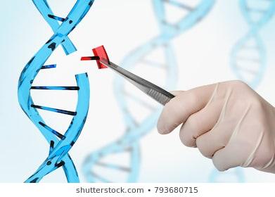 CRISPR y Prime Editing