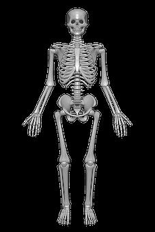 Tener los huesos fuertes