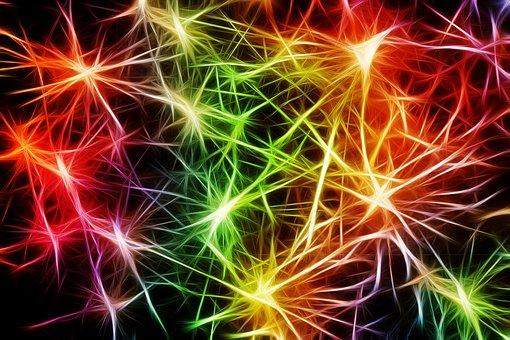 La sinapsis,  esa íntima conexión.