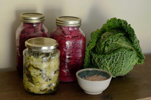 La microbiota intestinal, otra vez protagonista
